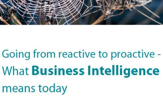 business intelligence whitepaper
