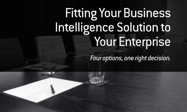 Infor business intelligence whitepaper