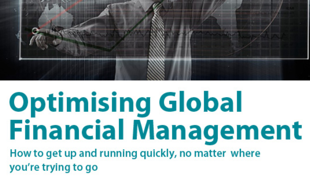 White paper for Infor financial management solution