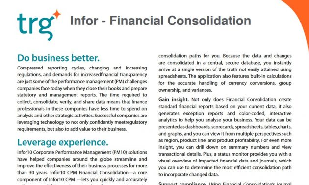 TRG IT Financial Management overview paper