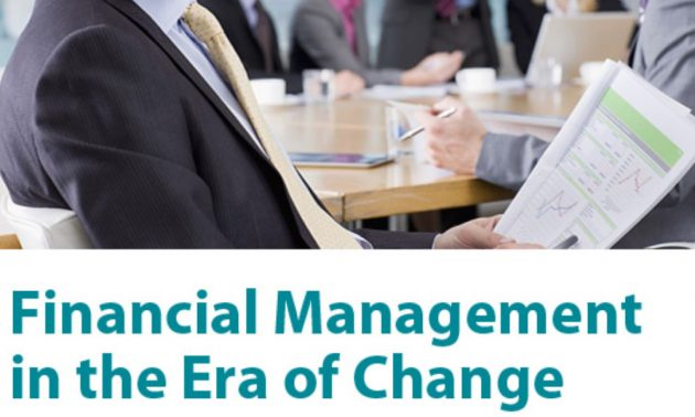 Infor SunSymstem and IT financial management solution white paper