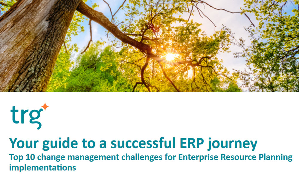 Effective Enterprise resource planning implementation whitepaper